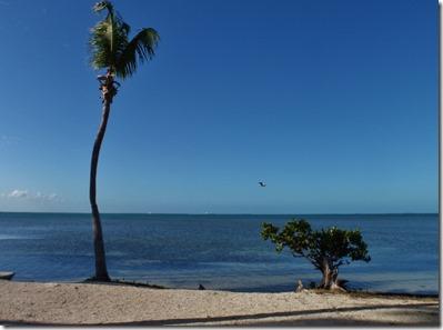 Sunshine Key, FLA
