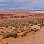 Hike down the Horseshoe Bend