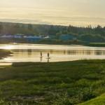 campbell-river-estuary
