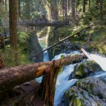 sol-duc-falls-trail-olympic-national-park-9