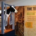 new-tiillamook-visitor-center-4