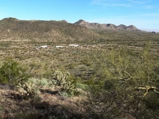 Sonoran Desert (2)