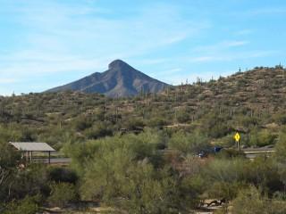 Sonoran Desert (4)