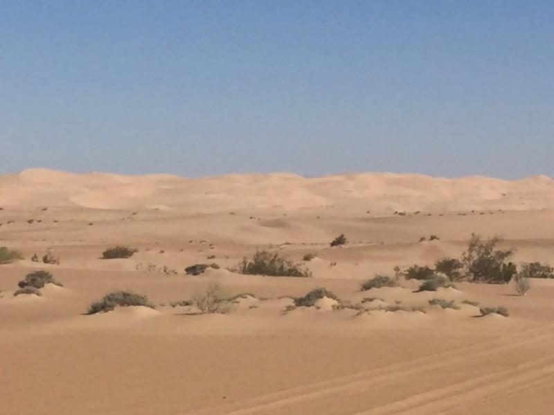sand-box